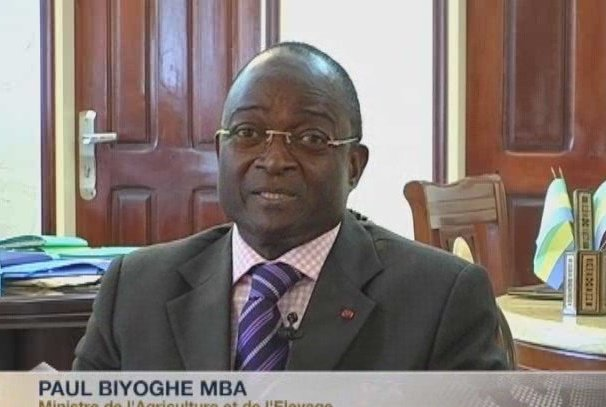 Paul Biyoghe Mba