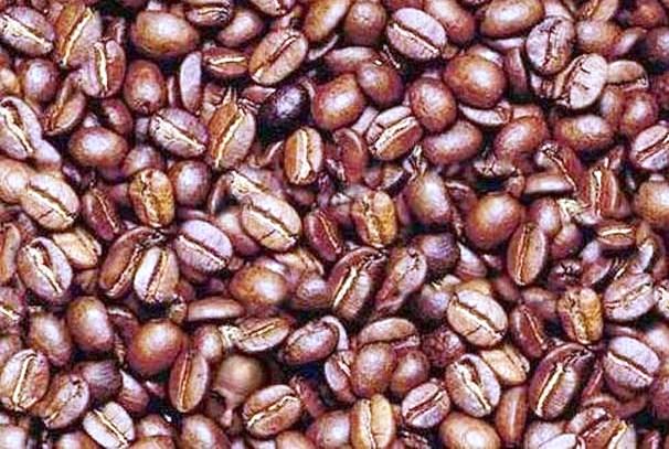 le café gabonais