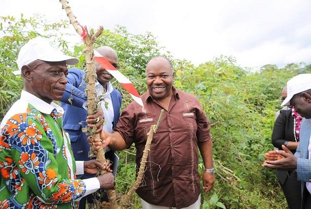 Ali Bongo Ondimba lance les récoltes du programme GRAINE