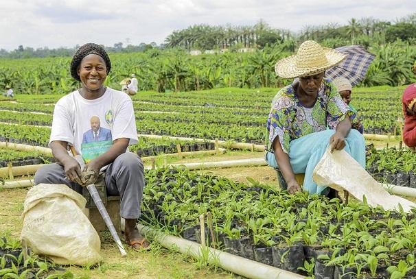 subvention aux paysans