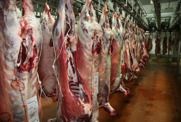 La viande bovine