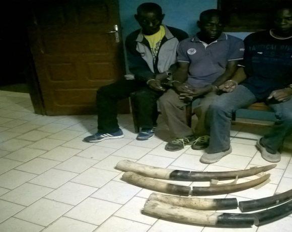 Trois traficants d'Ivoire à Mekambo