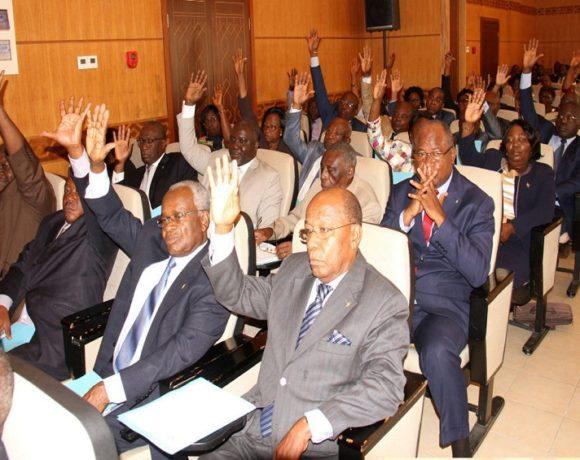 Le parlement vote la nouvelle constitution