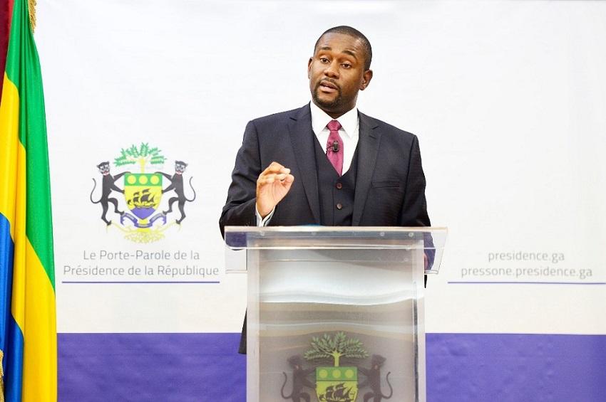 Ike Ngouoni Aila Oyouomi, Porte-parole de la Présidence de la République