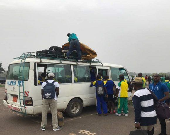 Les pantheraux au Cameroun