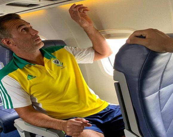 Les panthères dans dans l'avion