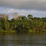 Les aires protégées littorales