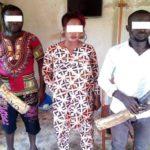 Préfet interpelé à Mouila pour trafic d'ivoire